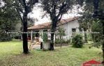Villa Unifamiliare Fregene sud (AGOSTO)
